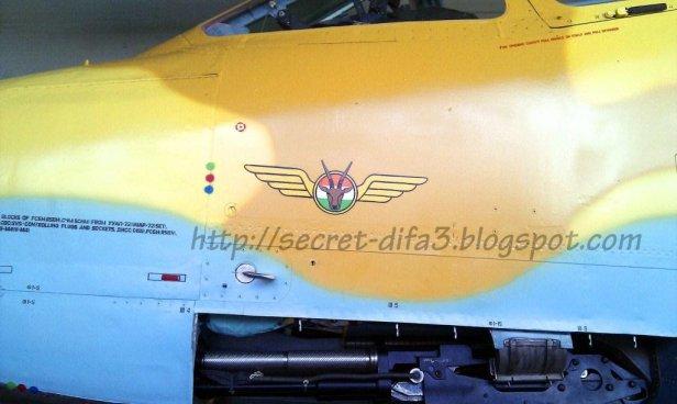 Su-25 de Níger